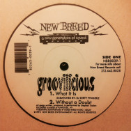 Groovilicious ‎– Groovilicious